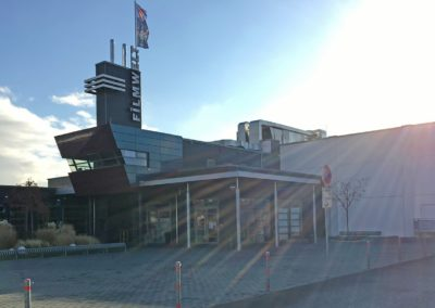 Kino Grünstadt - 2017